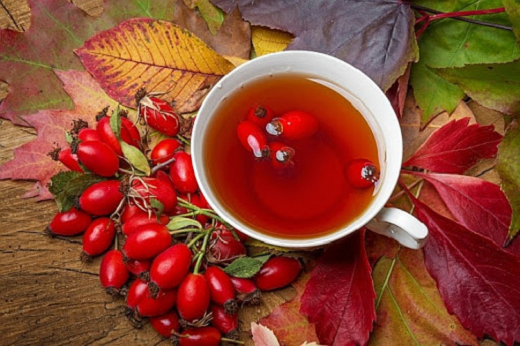 Various effects of rosehip anti inflammatory Rosehip